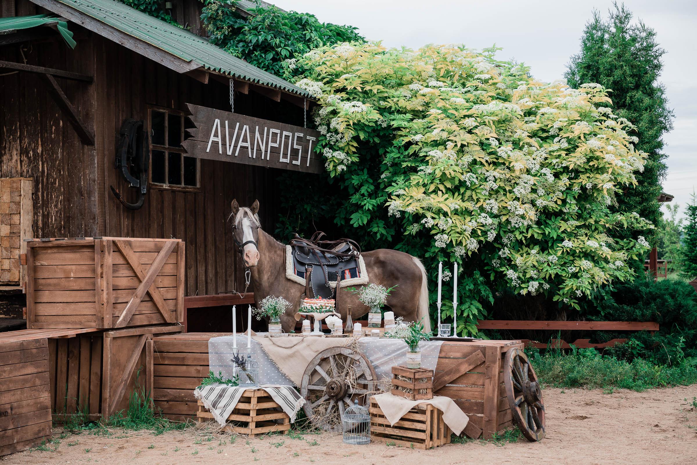 Весілля в стилі кантрі